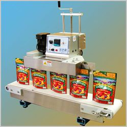 pouch packing machine chips